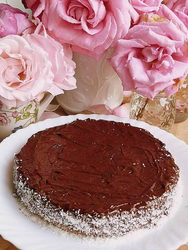 Gateau coco marron 001