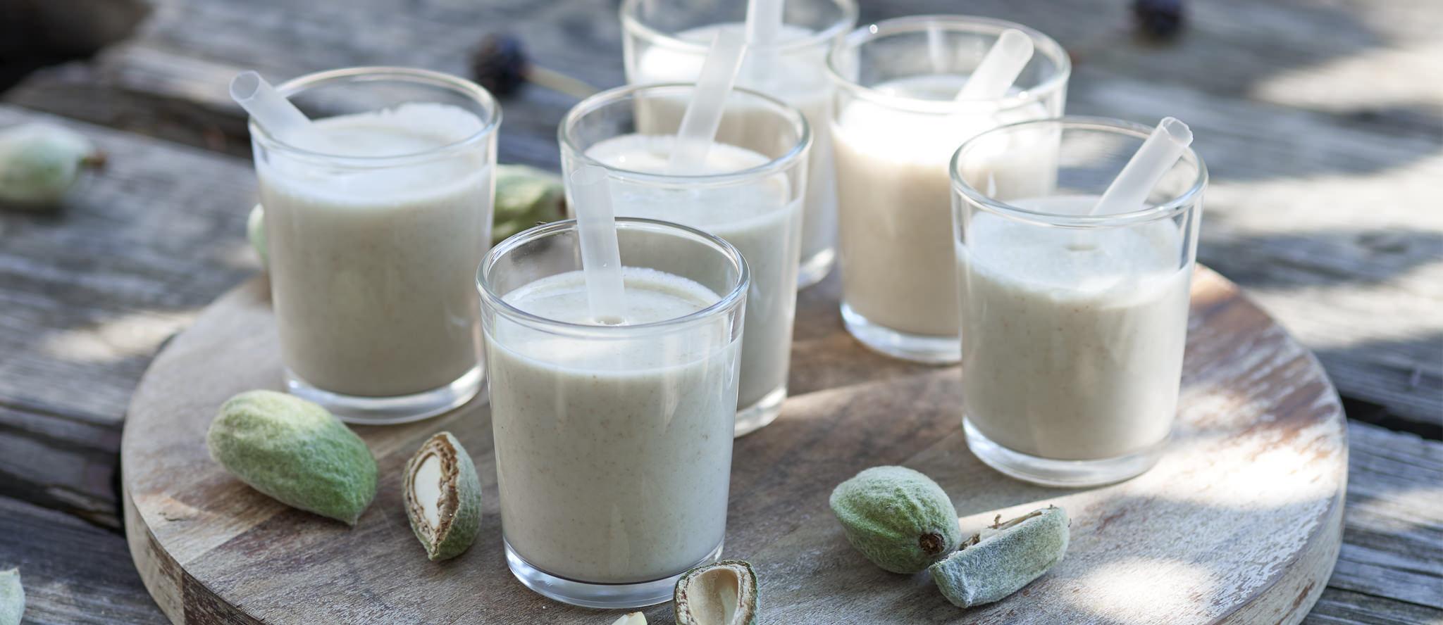 Band ajo blanco