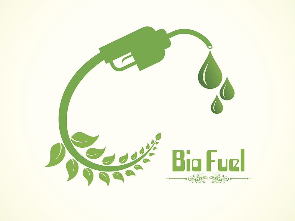 Biofuel 1000
