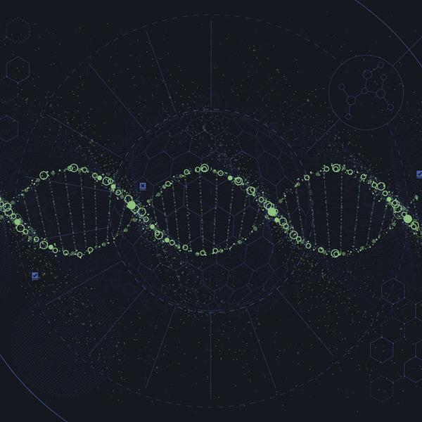 Epigenetique web