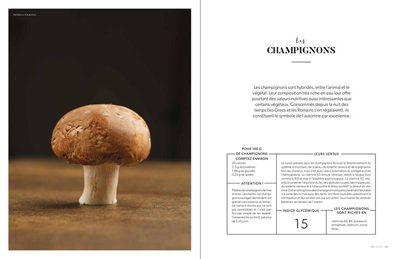 champignons valeurs nutritionnelles